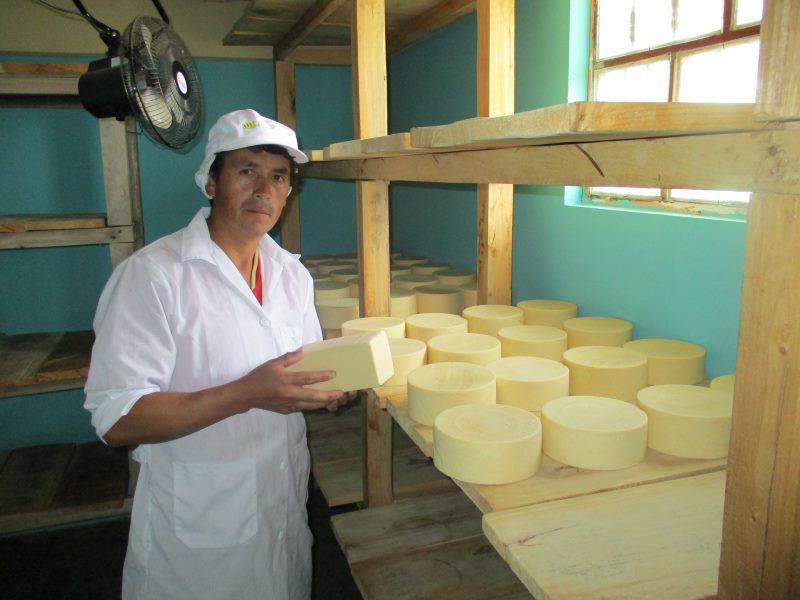 Sala de maduración de queso tipo Suizo