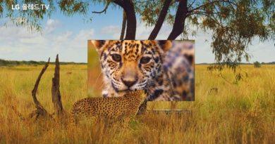 LG y National Geographic se unen para realizar comercial basado en la belleza de la naturaleza